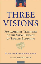 three visions-cover